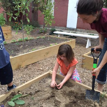 Youth tend to gardens for summer employment